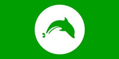 Как включить куки в Dolphin Browser